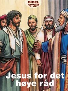 Jesus for det høye råd (ebok) av Ukjent