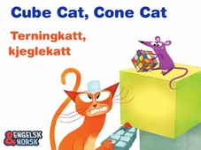 Terningkatt, kjeglekatt = Cube cat, cone cat