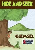Gjemsel = Hide and seek