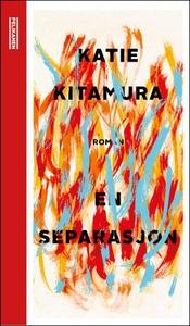 En separasjon (ebok) av Katie Kitamura