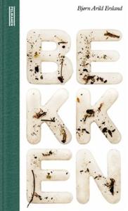 Bekken (ebok) av Bjørn Arild Ersland