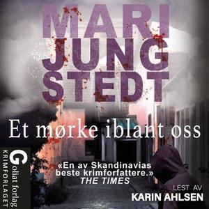 Et mørke iblant oss (lydbok) av Mari Jungsted