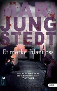 Et mørke iblant oss (ebok) av Mari Jungstedt