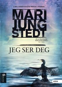 Jeg ser deg (ebok) av Mari Jungstedt