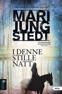 I den stille natt (ebok) av Mari Jungstedt