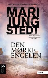 Den mørke engelen (ebok) av Mari Jungstedt