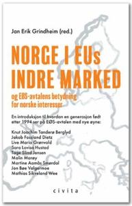 Norge i EUs indre marked (ebok) av