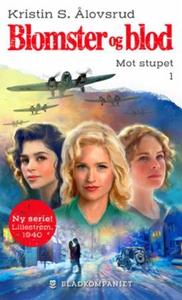 Mot stupet (ebok) av Kristin S. Ålovsrud
