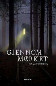 Gjennom mørket (ebok) av Eva Marí Amundsen