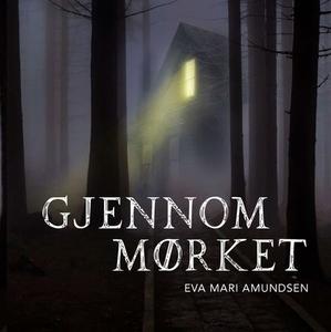 Gjennom mørket (lydbok) av Eva Marí Amundsen