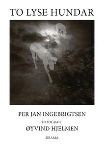To lyse hundar (ebok) av Per Jan Ingebrigtsen