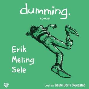 Dumming (lydbok) av Erik Meling Sele