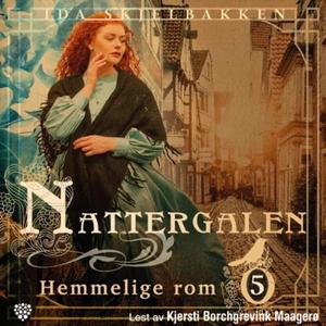 Hemmelige rom (lydbok) av Ida S. Skjelbakken