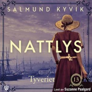Tyveriet (lydbok) av Salmund Kyvik