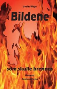 Bildene som skulle brennes (ebok) av Svein Wo
