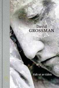 Falt ut av tiden (ebok) av David Grossman
