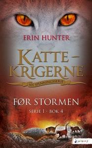 Før stormen (ebok) av Erin Hunter