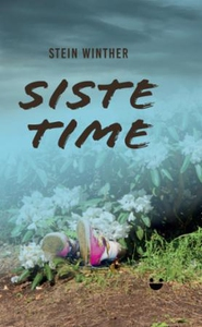 Siste time (ebok) av Stein Winther