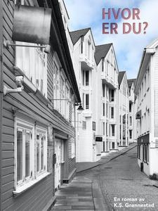 Hvor er du? (ebok) av K. S. Grønnestad