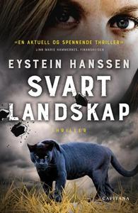 Svart landskap (ebok) av Eystein Hanssen