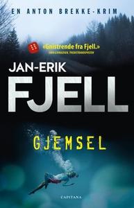 Gjemsel (ebok) av Jan-Erik Fjell