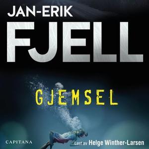 Gjemsel (lydbok) av Jan-Erik Fjell