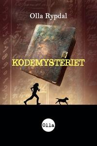 Kodemysteriet (ebok) av Olla Rypdal