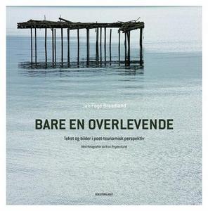 Bare en overlevende (ebok) av Jan Faye Braadl