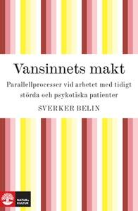 Vansinnets makt (e-bok) av Sverker Belin