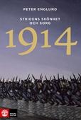 Stridens skönhet och sorg 1914