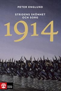 Stridens skönhet och sorg 1914 (e-bok) av Peter