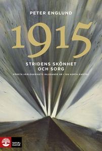 Stridens skönhet och sorg 1915 (e-bok) av Peter
