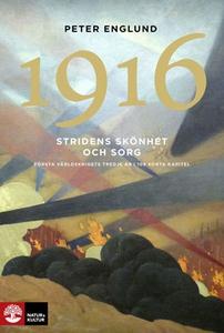 Stridens skönhet och sorg 1916 (e-bok) av Peter