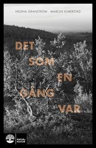 Det som en gång var (e-bok) av Helena Granström