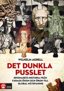 Det dunkla pusslet (e-bok) av Wilhelm Agrell