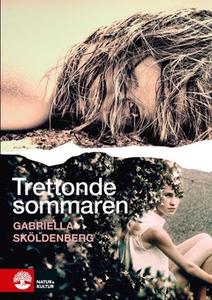 Trettonde sommaren (e-bok) av Gabriella Skölden