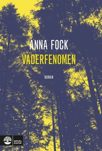 Väderfenomen (e-bok) av Anna Fock