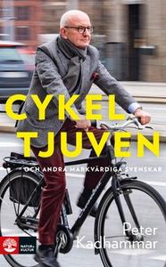 Cykeltjuven (e-bok) av Peter Kadhammar