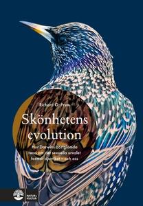 Skönhetens evolution (e-bok) av Richard O. Prum