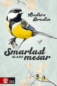 Smartast bland mesar (e-bok) av Anders Brodin