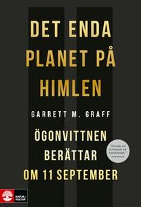 Det enda planet på himlen (e-bok) av Garett M G