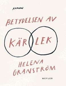 Betydelsen av kärlek (e-bok) av Helena Granströ