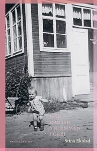 Här brusar strömmen förbi (e-bok) av Stina Ekbl