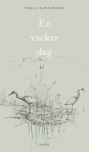 En vacker dag (e-bok) av Tomas Bannerhed