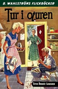Tur i oturen (e-bok) av Ester Ringnér-Lundgren