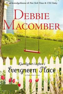 Kjærlighet i luften i Evergreen Place (ebok)