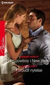 En cowboy i New York ; Forbudt nytelse (ebok)