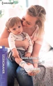 Sams mirakel ; En slags kjemi (ebok) av Lynne