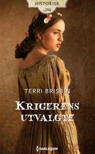 Krigerens utvalgte (ebok) av Terri Brisbin