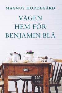 Vägen hem för Benjamin Blå (e-bok) av Magnus Hö